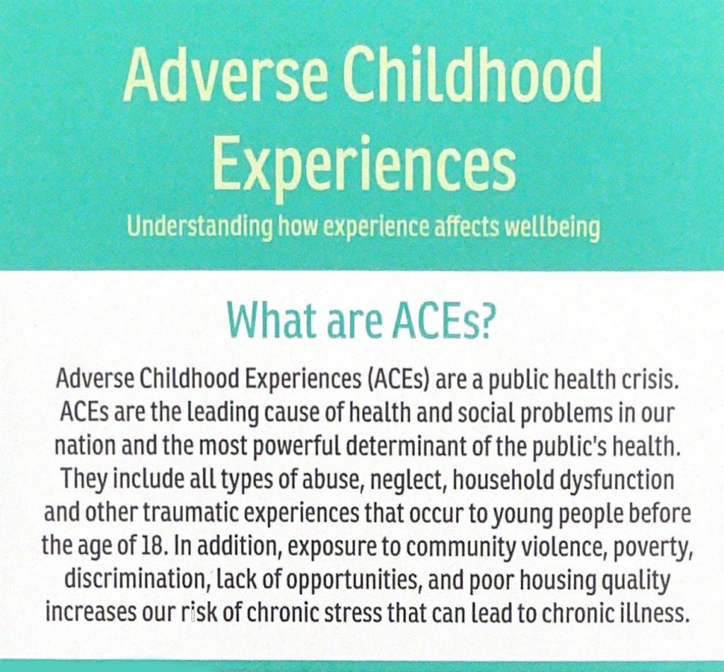 Adverse Childhood Experiences Palm Card